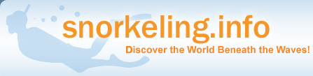 Snorkeling.info - Discover the World Beneath the Waves!